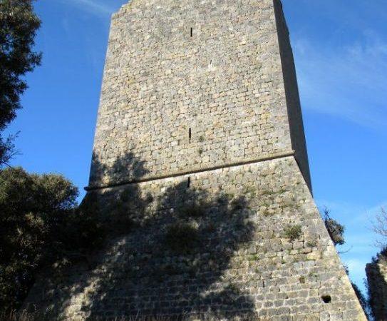 Agriturismo Maremma la Torre della Bella Marsilia
